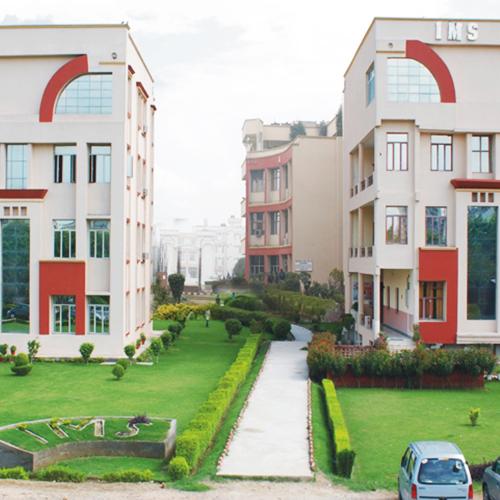 Institute of Management Studies | Noida