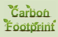 India's Challenges Over Carbon Foot Print